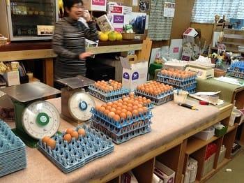 大村ファームでは卵を計り売りで販売しています。大村ファームに限り特別割引価格にてご提供いたします。